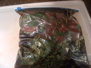 whole beef tenderloin inside of a bag of marinade