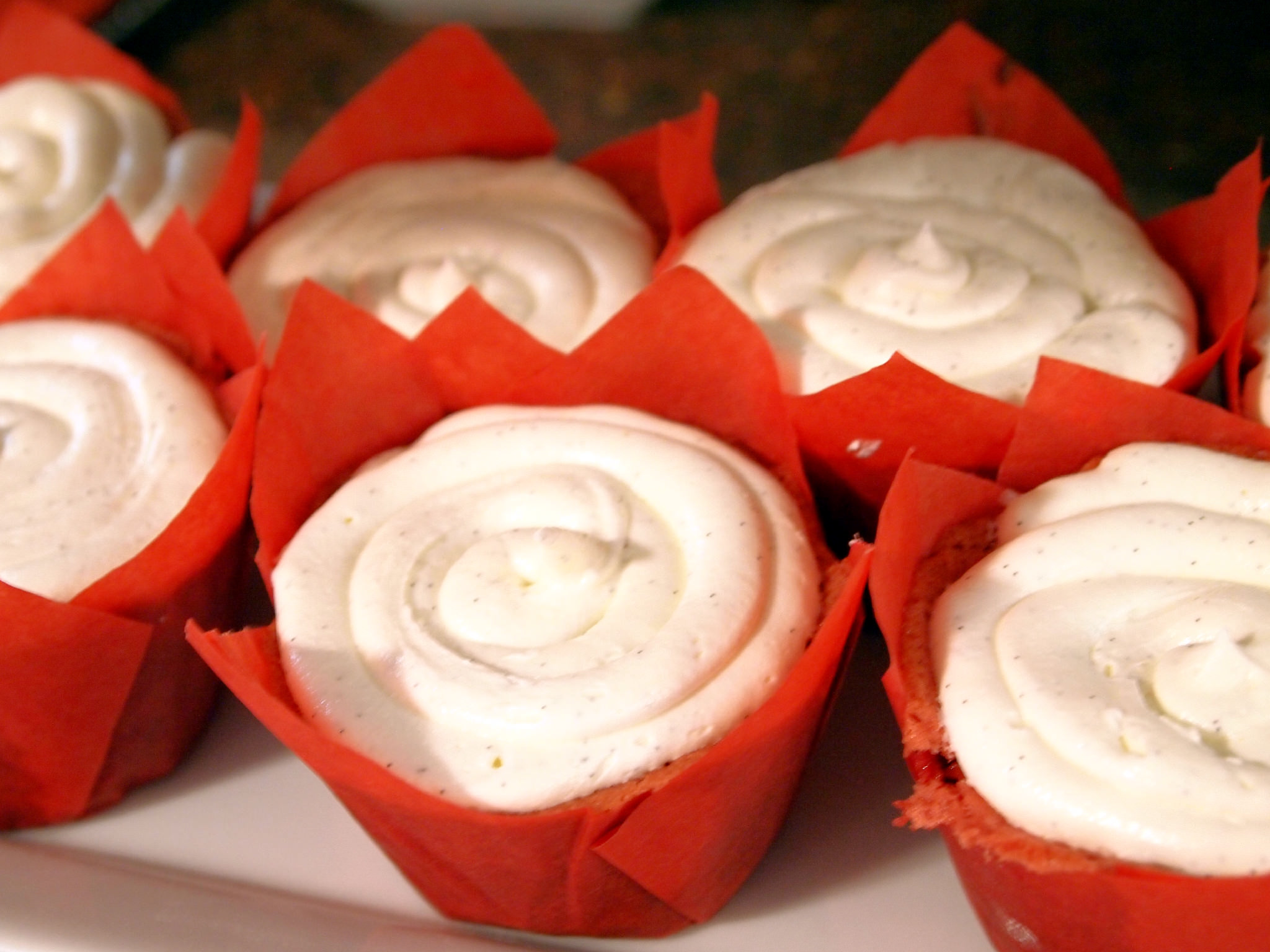 Strawberry cupcakes with marshmallow buttercream are moist strawberry-sweetened cupcakes topped with fluffy marshmallow buttercream frosting. | ComfortablyDomestic.com
