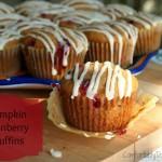 Pumpkin Cranberry Muffins are My Destiny