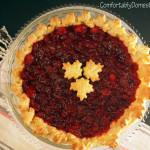Dark Chocolate Cranberry Pie