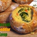 Baby, it's Cold Outside! Perfect for Soup Week and Broccoli Cheddar Soup