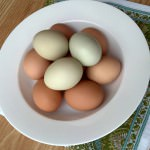 {Food Dork Fridays} Binding Stuff and Creamy Fluff: All About Eggs