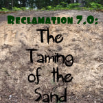 Reclamation 7.0: The Taming of the Sand, a.k.a. The Erosion Control Project