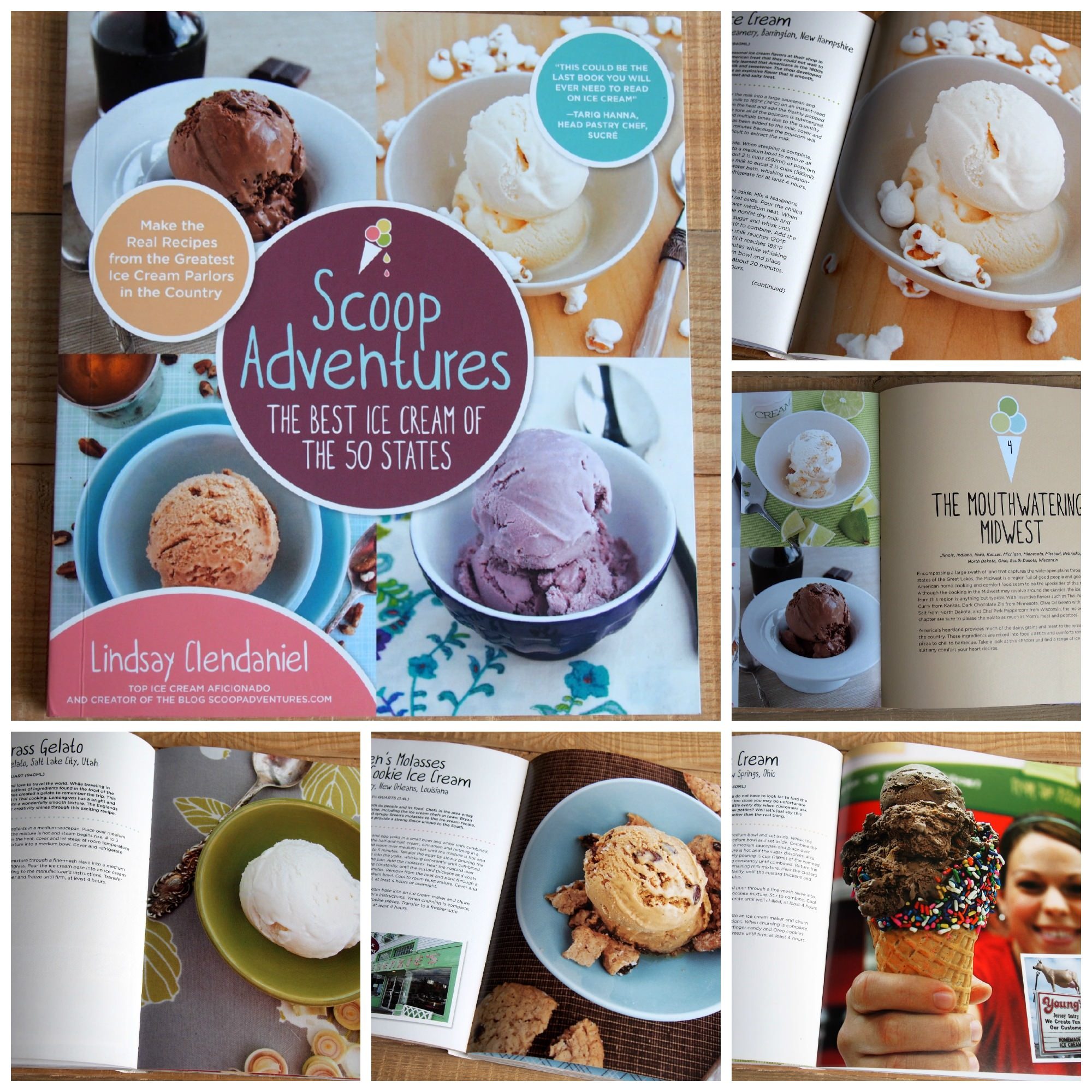 Scoop Adventures Book Giveaway | ComfortablyDomestic.com