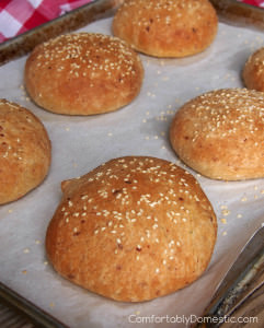Italian Herb Cheese Burger Buns