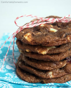 Double Chocolate Cranberry Cookies