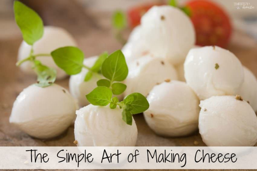 the-simple-art-of-making-cheese